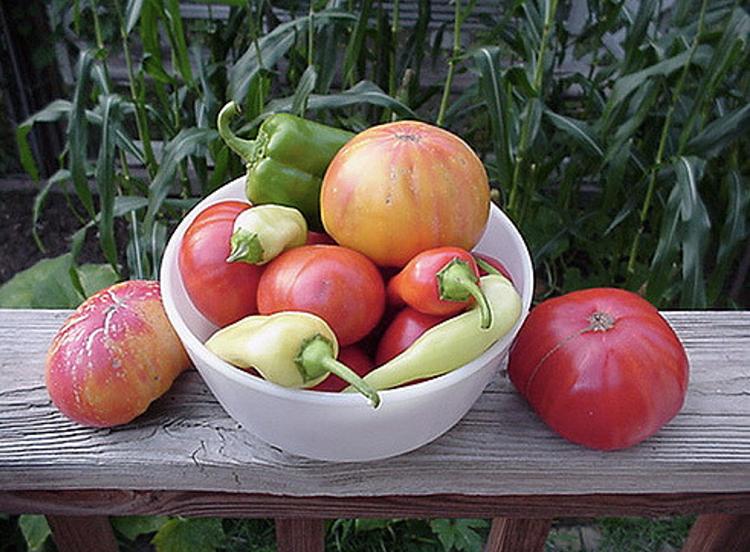 Medley of heirloom seeds vegetables